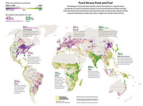 Food, feed, and fuel - How we should feed the 9 billion population | An-Min's Geospatial World | Scoop.it