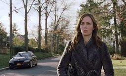 The Girl on the Train still UK's top ticket as Bridget Jones's Baby makes history | LVI Film | Scoop.it