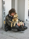 Bunny's Blog: Pets of the Homeless leads fourth national pet food drive | Pet News | Scoop.it
