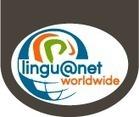 Lingu@net World Wide | Español para Extranjeros | Scoop.it