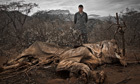 Chinese basketball star confronts Africa's poaching crisis - big picture | Life on Earth | Scoop.it