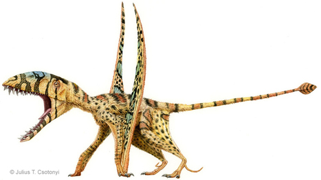 Dinosaurs With Attitude : NPR | Paleontology News | Scoop.it