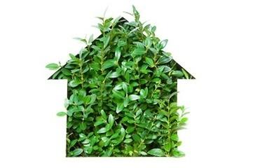 L'isolation écologique pour votre future maison - Construction durable | Développement durable | Scoop.it