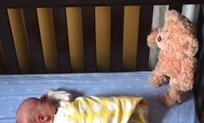 Couple's Stop Motion Baby Announcement Told by Teddy Bear - Buzz Log (blog) | Parenting, Family & Kids | Scoop.it