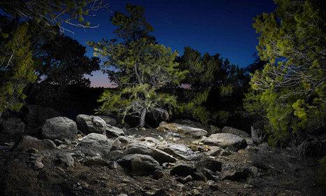 Les paysages nocturnes sublimés par la lumière à LED | Arts & Culture | Scoop.it