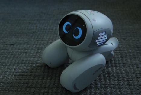 Domgy - Le robot de compagnie imaginé par Roobo | qrcodes et R.A. | Scoop.it