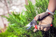 Summer Property Maintenance Tips | Timberwise | Property Care | Scoop.it