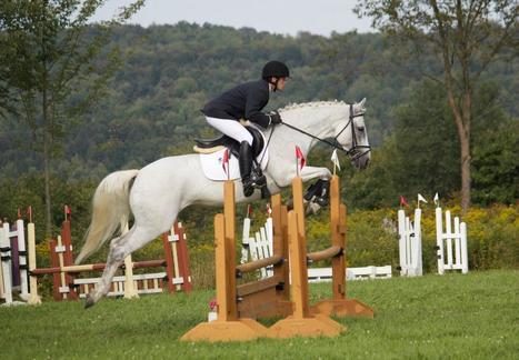 L'équitation : un sport d'exception - JournalLeGuide.com | Place de l' equitation dans le sport francais | Scoop.it