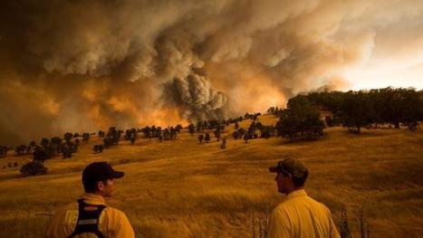 Don't dismiss the link between wildfires and climate change, scientists say | Climate change challenges | Scoop.it