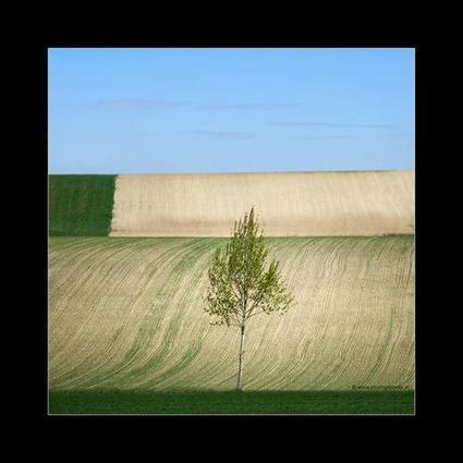 Landscape Photography by Beate Pischl | Photography Blog | Scoop.it