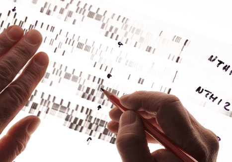 Google Is Scouring Ancestry.com to Find Out What's in Your Genes | Implications of Big Data | Scoop.it