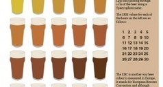 The many colours of beer | INFOGRAPHICS | Scoop.it