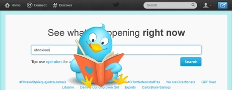 How to use Twitter to learn Vocabulary in Context - Fair Languages | Language Learning Methods | Scoop.it
