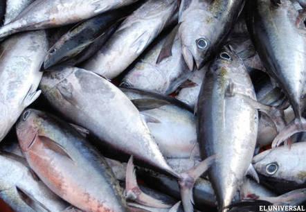 Los ácidos grasos del pescado protegen contra el cáncer de mama - Vida | Cancer de mama | Scoop.it