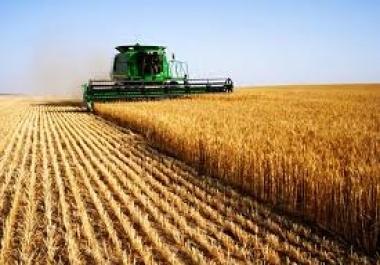 Cheap Agriculture Website Design | Agriculture Website Design | Scoop.it