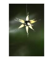 White Star 10 Arm Ceiling Lamp | Interiors | Scoop.it