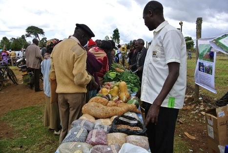 Laikipia Rural Voices (LRV): Climate smart agriculture is the way to go | BioFuels - Agriculture & Oil Trees | Scoop.it
