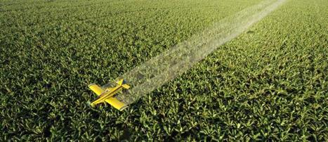Posible relación entre los pesticidas y el Parkinson | Regulación industria y productos químicos | Scoop.it