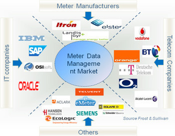 Meter Data Management - A Fast Growing Market Emerging Out of the AMI Shell | Smart Energy Systems | Scoop.it