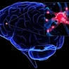 Boost Brain Power with supplement