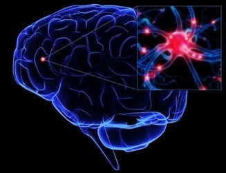 Interested In Advanced Evo Brain Boost?...Read Here First Before You Try It! | Boost Brain Power with supplement | Scoop.it