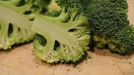 I 7 cibi più nutrienti e naturali per integrare l'alimentazione   Alimentazione Naturale, EcoRicette Veg e Vegan   Scoop.it