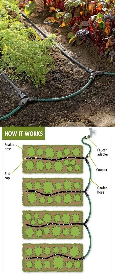 Drip systems for gardens | Backyard Gardening | Scoop.it