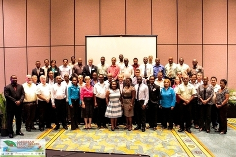 The Caribbean Plant Health Directors Forum | crop pests and diseases | Scoop.it