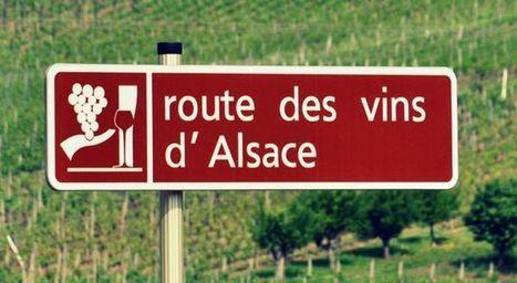 Sur la route des vins d'Alsace - Wine Passport | Route des vins | Scoop.it