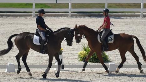 JO 2016 : l'équitation aura bien lieu à Rio | Cheval et sport | Scoop.it