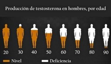 Testosterona: lo que hay que saber   Artículos de divulgación científica   Scoop.it