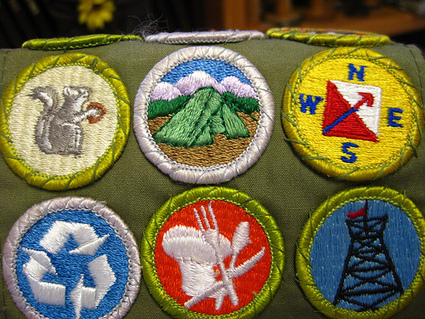 » The Badge Bandwagon: Will You Jump on Board?   Badges for Lifelong Learning   Scoop.it