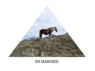 EN MARGE(S) : LES FORÊTS - TEXTE D'ARNAUD MAÏSETTI | Pour une web-association des auteurs | Scoop.it