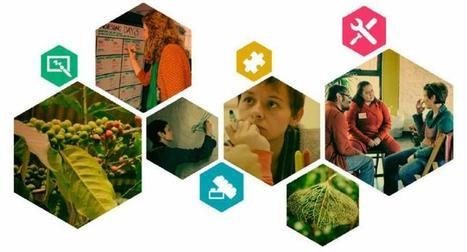 Harvesting & Collective Sense-Making: Moving from Dialogue to Action & Learning | Art of Hosting | Scoop.it
