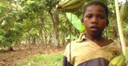 Nestlé Child-Slaves Win Right to U.S Court Case | up2-21 | Scoop.it