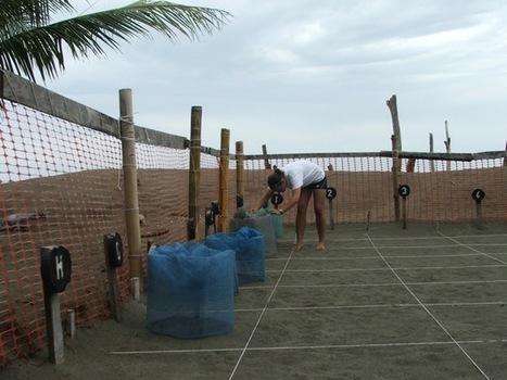 "Jennifer Volunteer Abroad in Costa Rica | Volunteers Abroad Reviews and Feedbacks | ""#Volunteer Abroad Information: Volunteering, Airlines, Countries, Pictures, Cultures"" | Scoop.it"