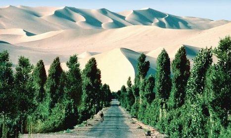 Une grande muraille verte pour sauver Pékin | Nouveaux paradigmes | Scoop.it