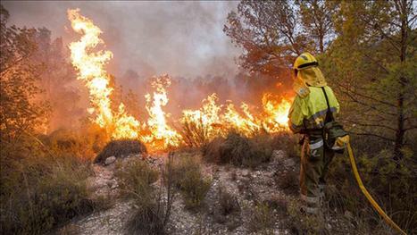 Un mes después de la ley que permite recalificar terrenos incendiados, España arde   Política & Rock'n'Roll   Scoop.it