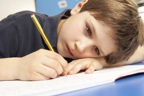 Bloqueos con asignaturas ¿cómo ayudar desde casa? | Recull diari | Scoop.it