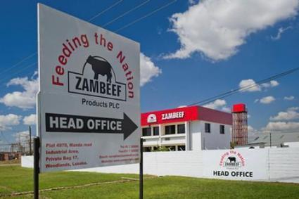 Zambie : les importations de viande mettent en danger 4000 emplois chez Zambeef - Agence Ecofin   agrophil   Scoop.it