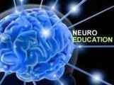 The Brain: Consciousness and Creativity | Managing Technology and Talent for Learning & Innovation | Scoop.it