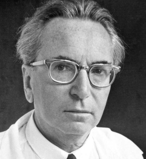 Viktor Frankl on the Human Search for Meaning | Psychology, Sociology & Neuroscience | Scoop.it