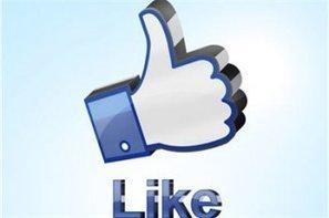 9 outils pour se passer de Facebook Insights | Facebook2 | Scoop.it