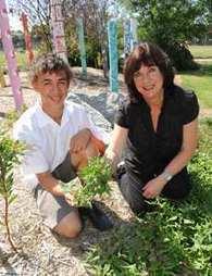 Bush tucker gardens (Beaconhills College) | Australian Plants on the Web | Scoop.it