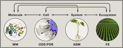 Meeting the Global Food Demand of the Future by Engineering Crop Photosynthesis and Yield Potential: Cell | Plant Gene Seeker -PGS | Scoop.it