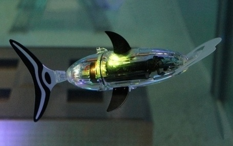 Robotswim, specialist in designing mini autonomous robot fish. | The Robot Times | Scoop.it