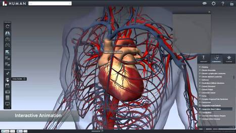 BioDigital Human: Explore the Body in 3D!   Finding Online Course Content   Scoop.it