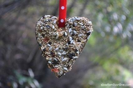 Quick and Easy Valentine Bird Feeder - Slow Family | Kindergarten | Scoop.it