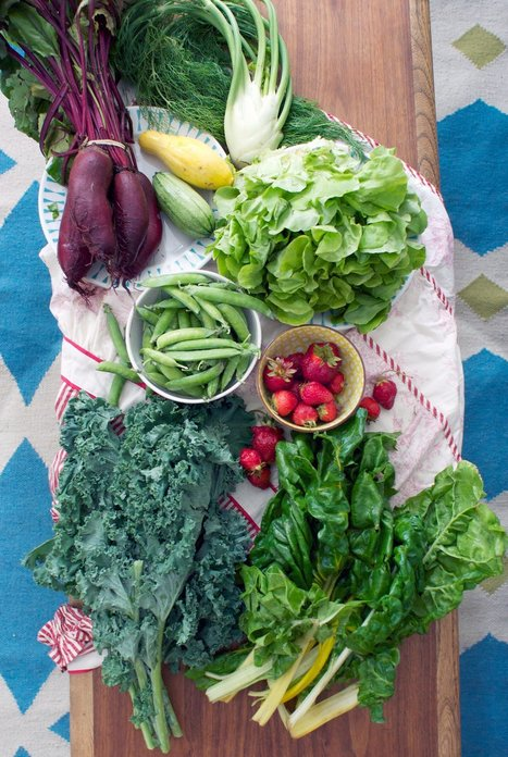 Want to Feed Your Microbiome? Eat More Veggies! | The Kitchn | Plant Microbe Interactions | Scoop.it