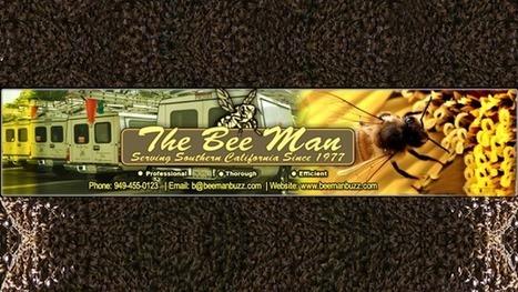 Follow us on Google - The Bee Man | docusearch | Scoop.it